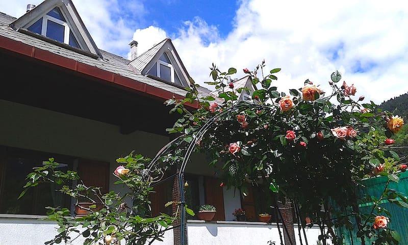 Bilocale Verde A 2 passi dall'Alta Via - Borzonasca - Appartement