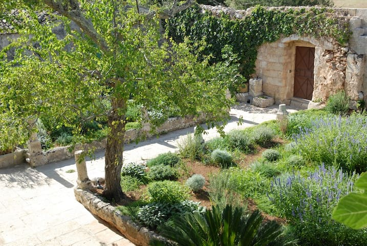 Country house in an olive grove  - Spongano - Maison