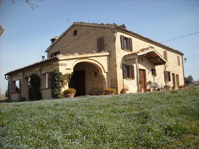 B&B Cascinale La Mimosa - Cupramontana - Bed & Breakfast