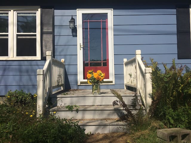 Blue House in the Village - Trumansburg - Hus