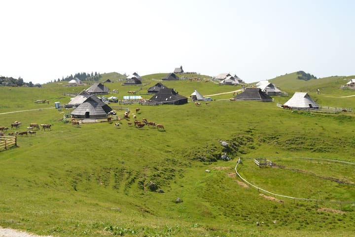 Cottage in beautiful nature - Velika planina - Velika Planina - Hut