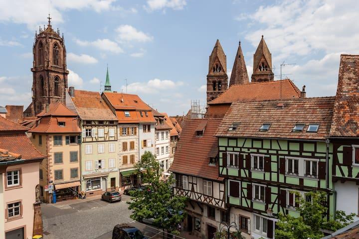 Sélestat Alsace - Le perchoir - Sélestat - Apartemen