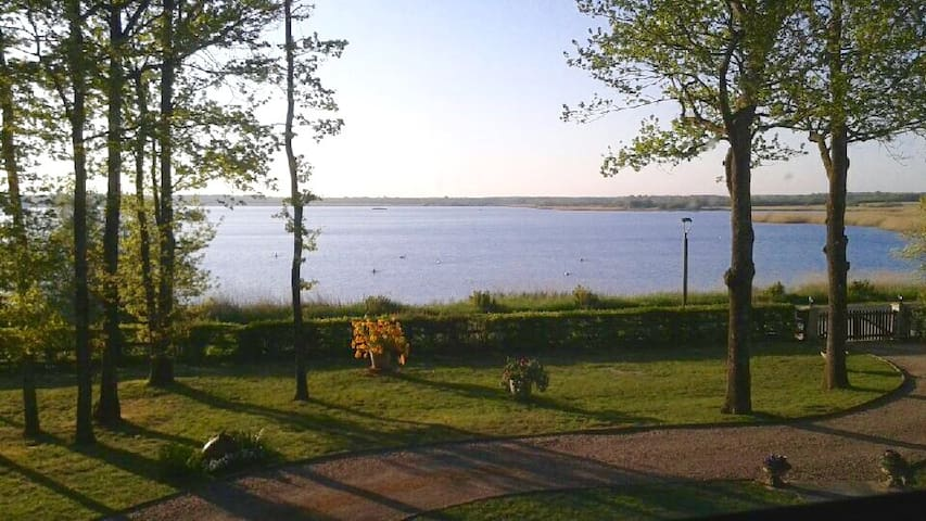Face a l'étang de la Gabrière proximité LE BLANC - linge - Hus