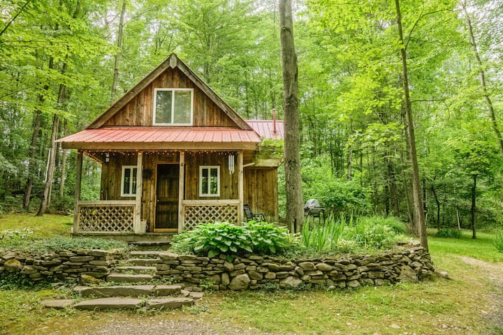 Springs Retreat Cabin Rental - Montour Falls