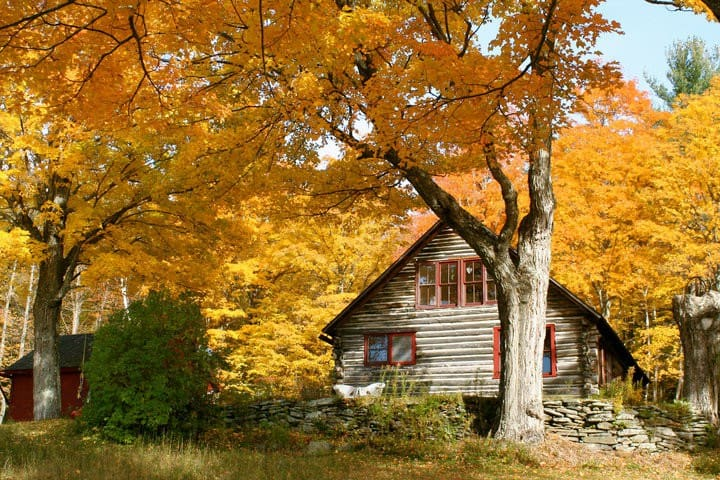 Super private old-school cabin on a working farm - Newfane - Haus