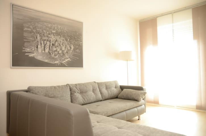 Sofa im Wohnzimmer - Ingolstadt - Leilighet