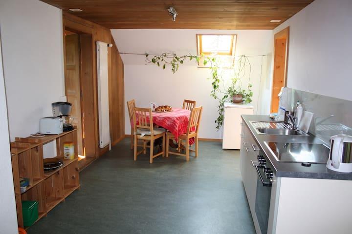 Grosse Wohnung mit fantastischer Bergsicht - Längenbühl - Appartement