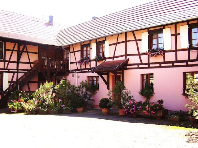 Gîte Duplex Centre Alsace 4 p. - Huttenheim - 獨棟