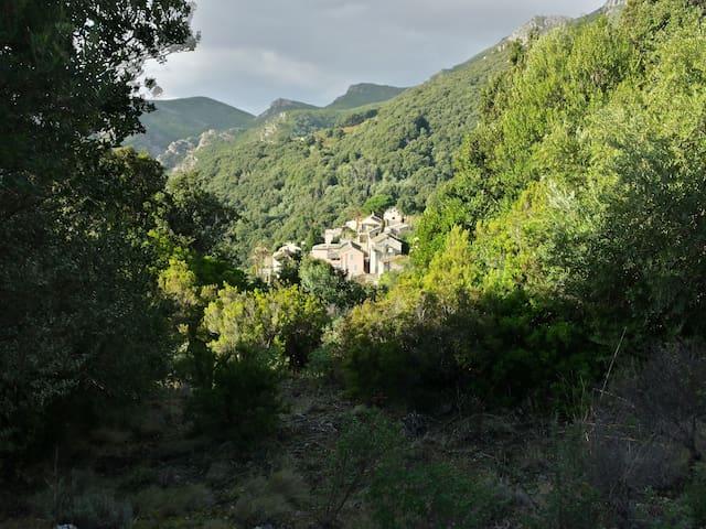 Studio Cap Corse - Rogliano - Huis