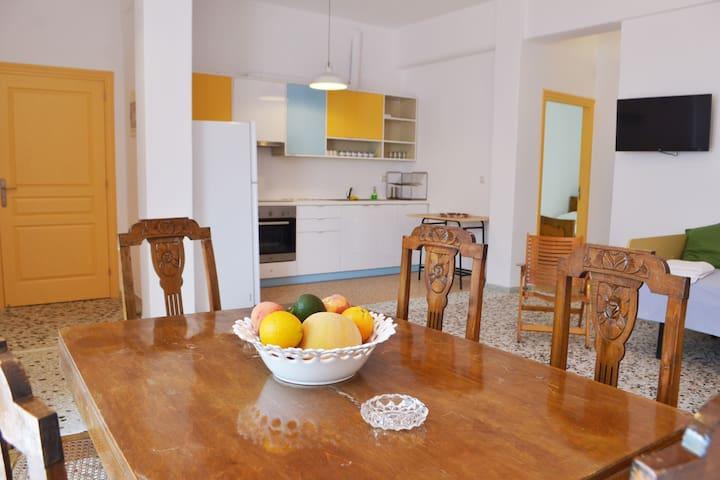 """Luxurious Gold"" Spacious Vacation Apartment - Gavrio"