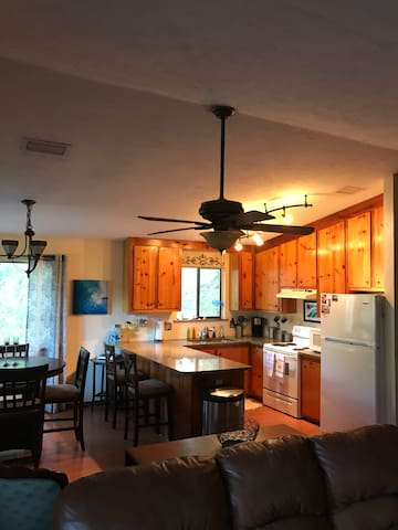 Anastasia Island Tropical Treehouse - St. Augustine - Pension