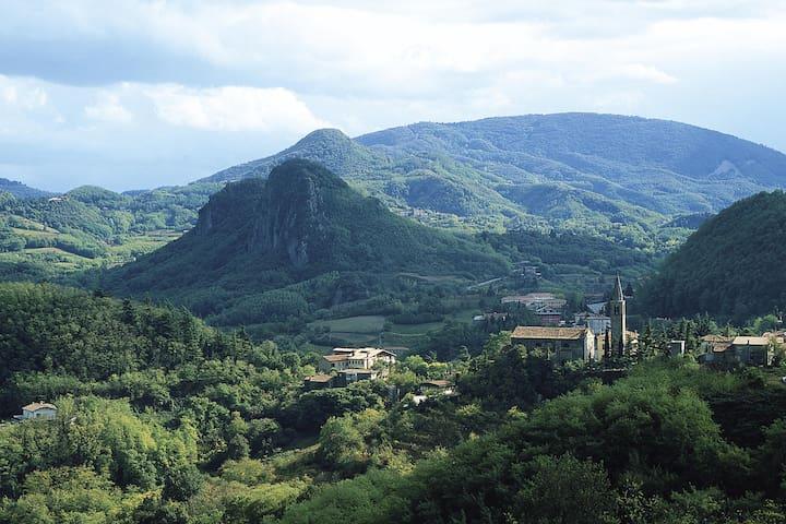 Vip residence among Euganean Hills - Villa - Casa