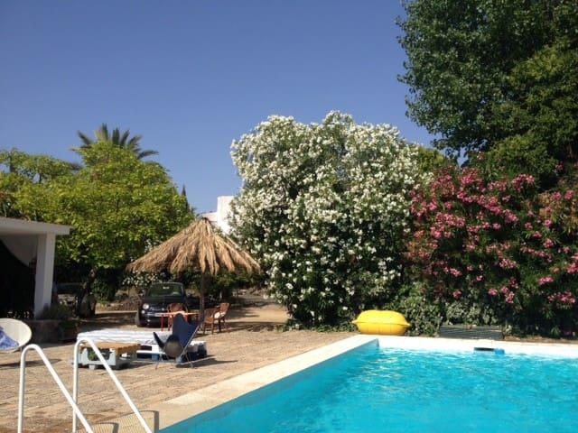 Casa-chalet de los 70's con piscina - Montilla - Ev