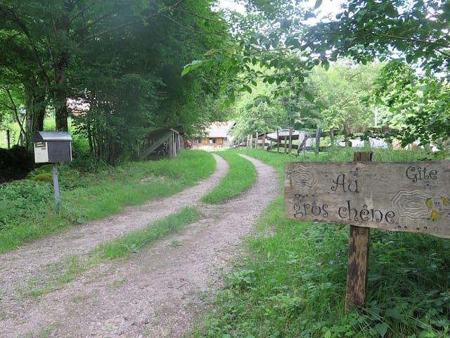 Au gros chêne - Plancher-les-Mines - Ev
