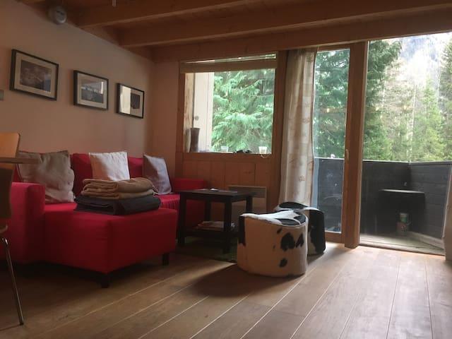Argentiere - Ski Apartment - Chamonix