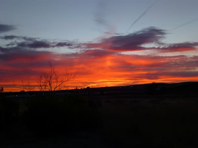 Desert Country Retreat ~ Midway to Montana - Odessa - Bed & Breakfast