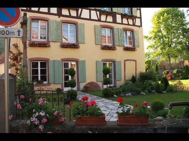 Appartement de charme - Soultzbach-les-Bains - Hus