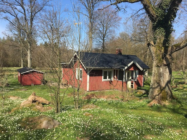 Small house on the countryside - Ljungbyhed - Ev