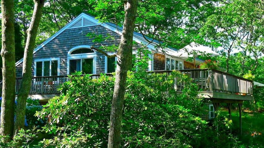 Central location for your vacation - Oak Bluffs