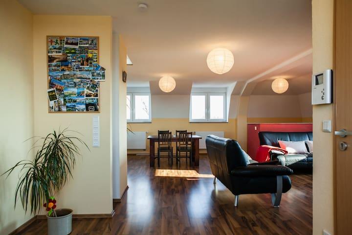 Helles Penthouse mit Balkon - Paderborn - Apartemen