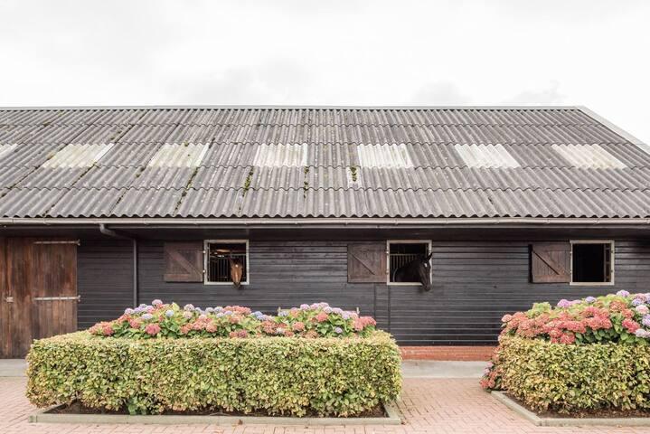Landelijk overnachten met je paard - Frieschepalen - Huis