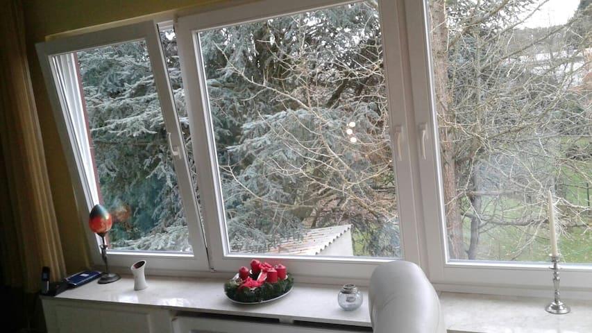 Whg mit Garten/Garden apartment - Detmold - Leilighet