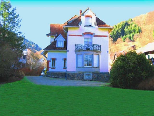 LES TILLEULS charmante chambre d'hôtes en ALSACE - Linthal, Haut-Rhin - 家庭式旅館
