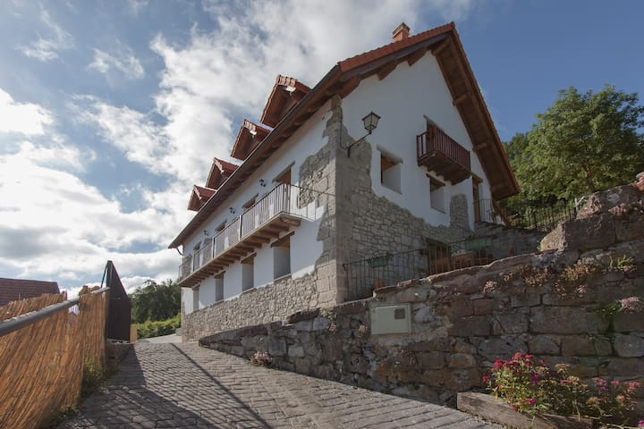 Casa rural Enekoizar - Abaurrea Alta - Hus