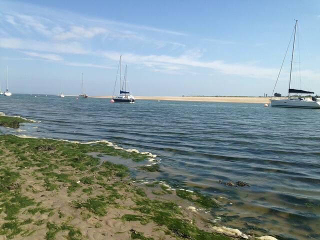 Estuary view, Rush - Rush