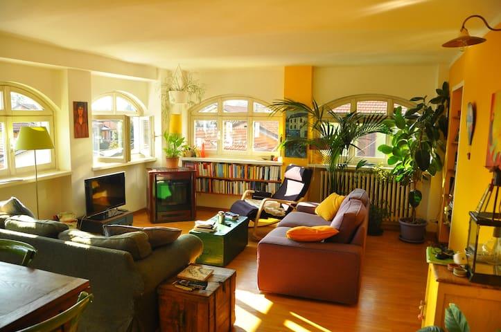 Charming apartment of the 19th cent - Turín - Departamento