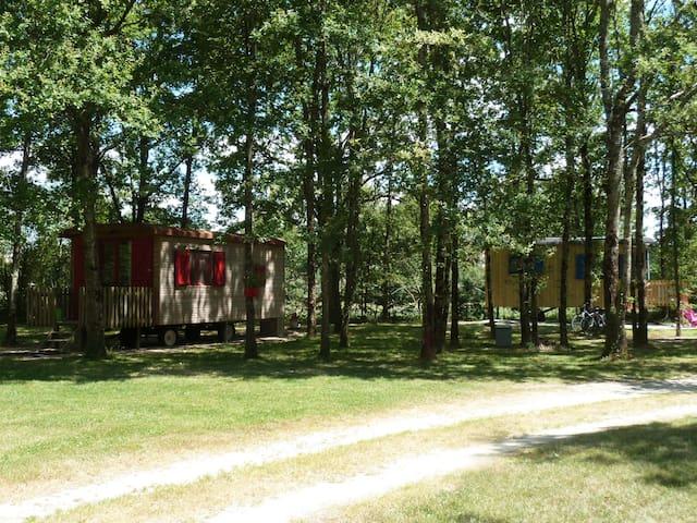 roulotte proche châteaux  et zoo de beauval - Vernou-en-Sologne - Diğer