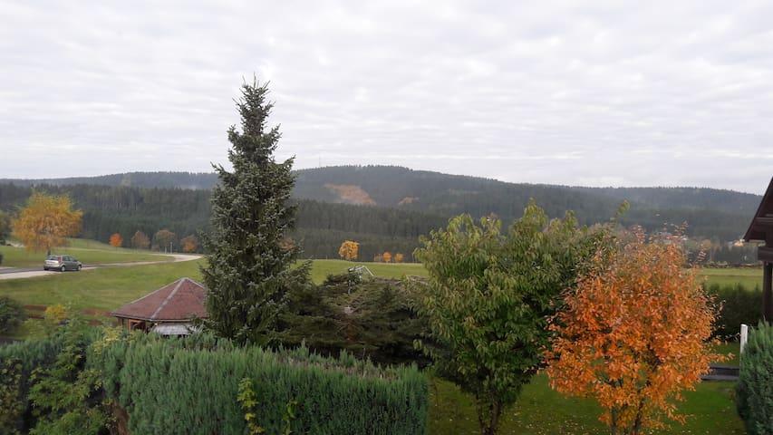 Ferienwohnung mit Blick ins schöne Erzgebirge - Schönheide - Apartamento