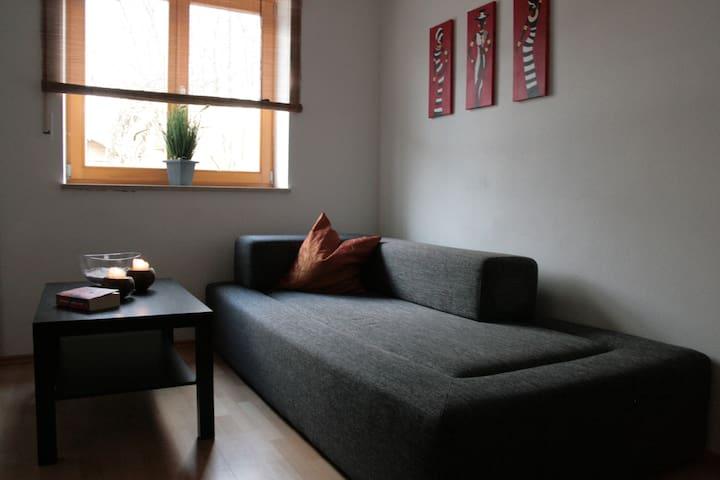 Guest room near Rosenheim - Schechen - Leilighet