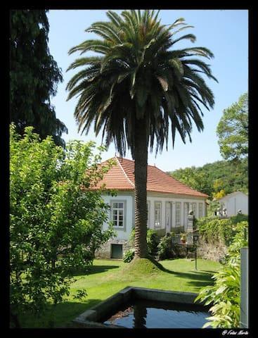 Casa de campo secular - Amarante - Villa