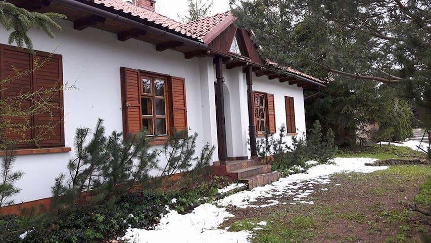 Big holiday house in Juszczyn - Juszczyn - Casa