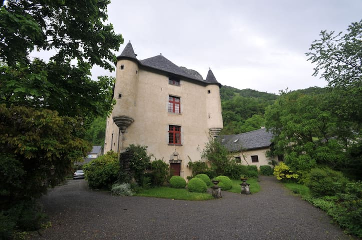 Manor House in the Pyrénées - Aste-Béon - Huis