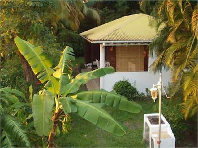 studio ti-caraïbe - Basse-Terre - Appartement