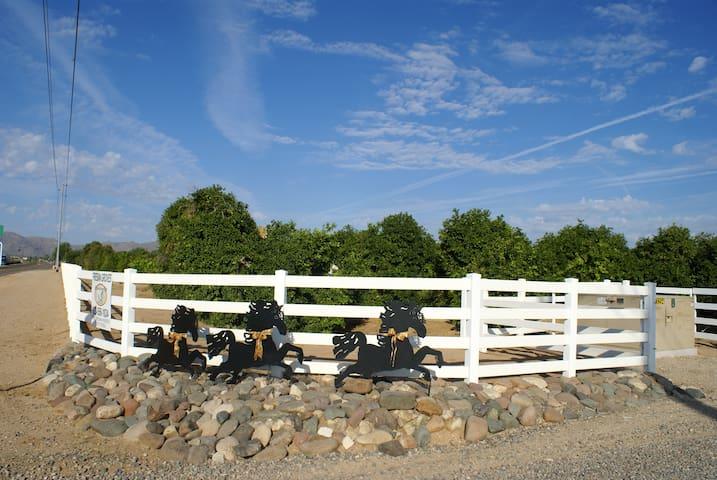 Guest Home on Luxury Ranch Estate - Surprise - Casa