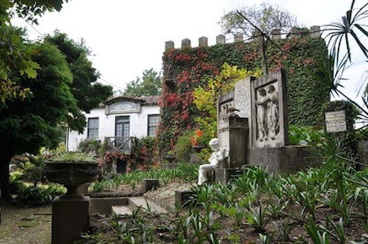Casa das Figueiras, Travanca - Travanca - Villa