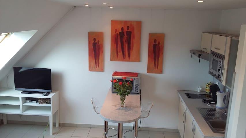 Charmant studio près de Colmar - Oberhergheim - Appartement