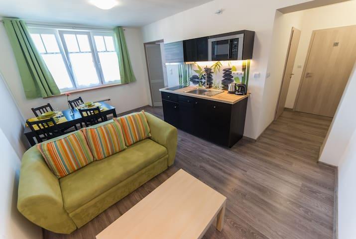 Apartmán AndruL - Frymburk - Lägenhet