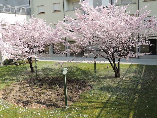 Quiete appartamento, casa, zona, rione Germanedo - Lecco - Departamento