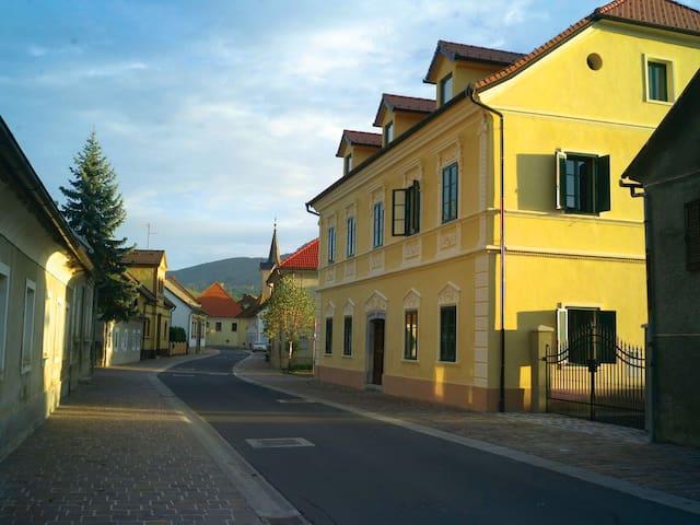 """Villa in the """"Venice of Dolenjska"""" - Kostanjevica na Krki"""