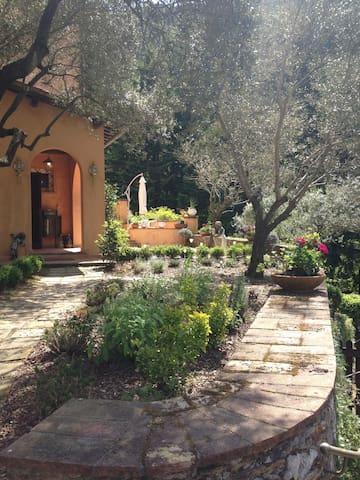 Entire farmhouse to rent near Lucca - Capannori - Villa
