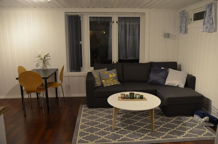 Welcoming and quiet studio apartment close to Oslo - Bærum - Appartement