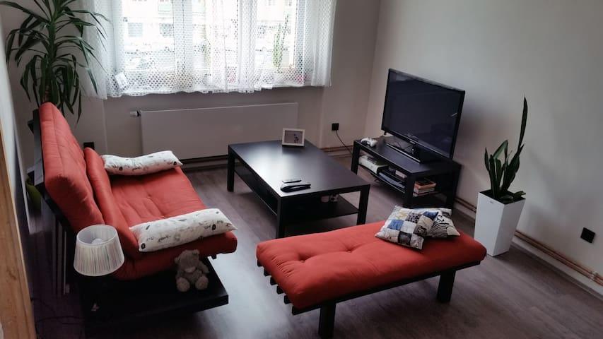 Byt v centru města / Cozy flat in city center - Mladá Boleslav