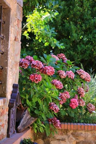 La Suite della Foresteria del Golf Montecatini - Monsummano Terme - Bed & Breakfast