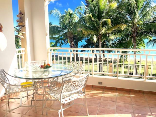 Elegant and peaceful beachfront apt - Añasco