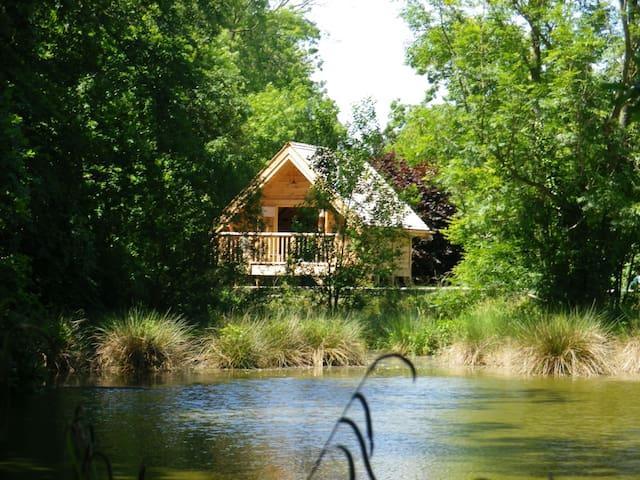 Insolite: La Cabane de la Caroline - Saint-Gilles-de-la-Neuville - Kulübe
