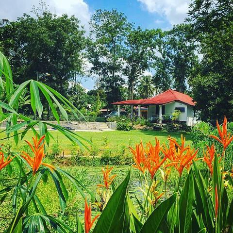 Idyllic retreat in Laman Si Nani, Lenggeng. - Lenggeng - Huis